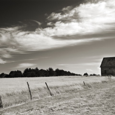 Barn and Clouds- CA