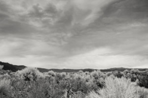 Brush and Storm Clouds- Mono Lake