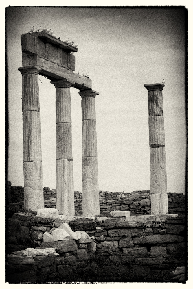Delos- Greece- Pillars and Birds 2