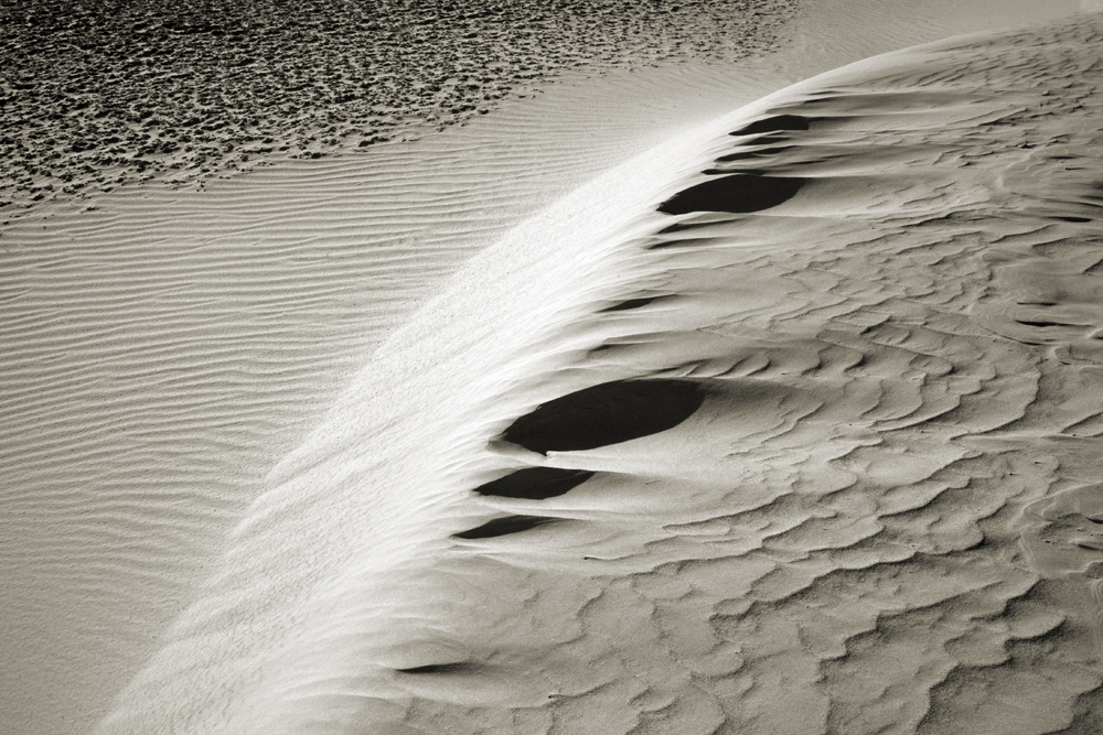Dune Contrasts- Death Valley