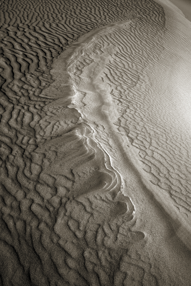 Dune Patterns III Death Valley