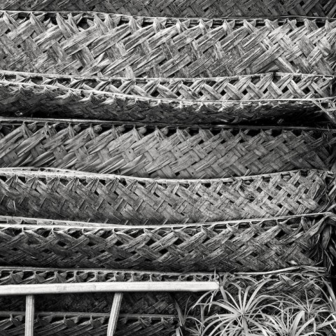 Grass Panels and Ladder- Moorea
