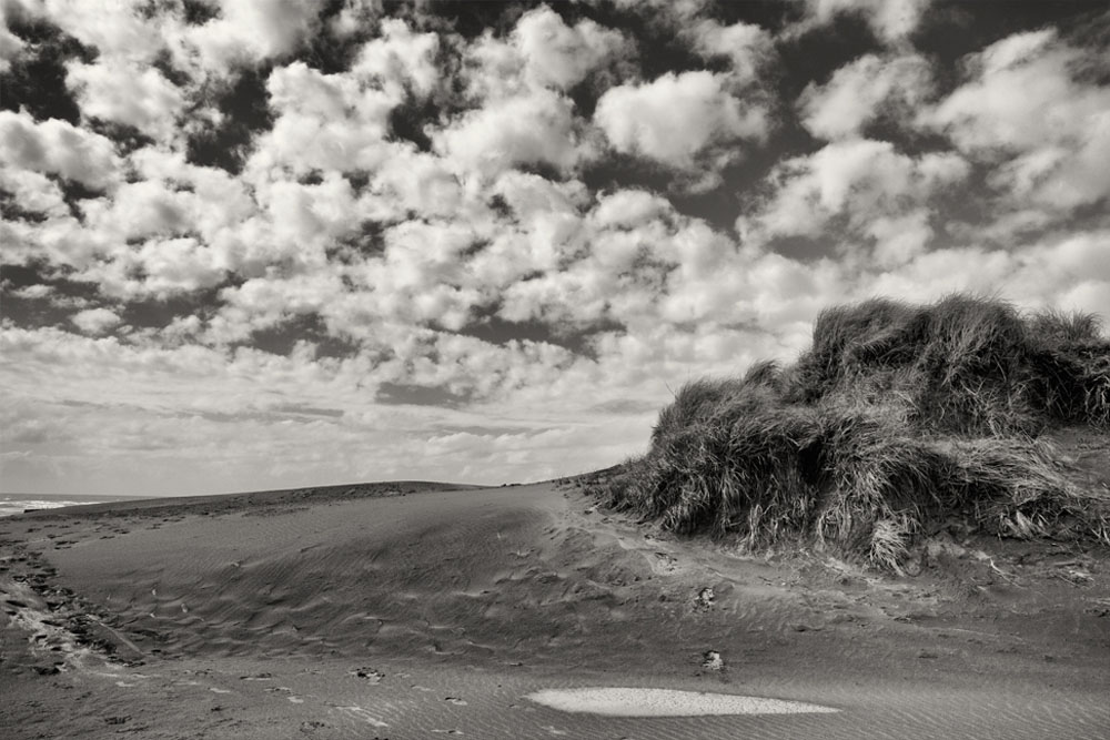 Beach Dunes, Oregon, 2015
